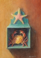 starfish on top of a blue box with a crab inside
